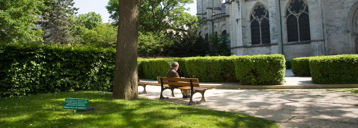 Parcs et jardins ville de saint denis for Entreprise parc et jardin